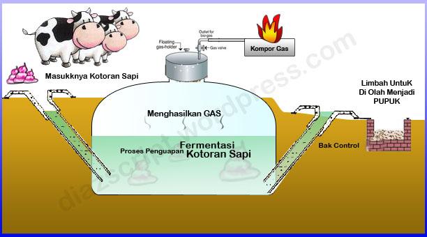Biogas Kotoran Sapi Sebagai Energi Alternatif Petani Top